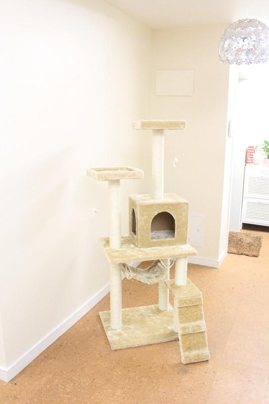 New-Beige-leopard-skin-Pink-57-034-Cat-Tree-Condo-Furniture-Scratch-Post-Pet-House