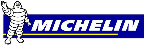 Michelin 12260 12v Car Tyre Inflator Air Compressor And Gauge